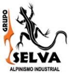 Grupo Selva